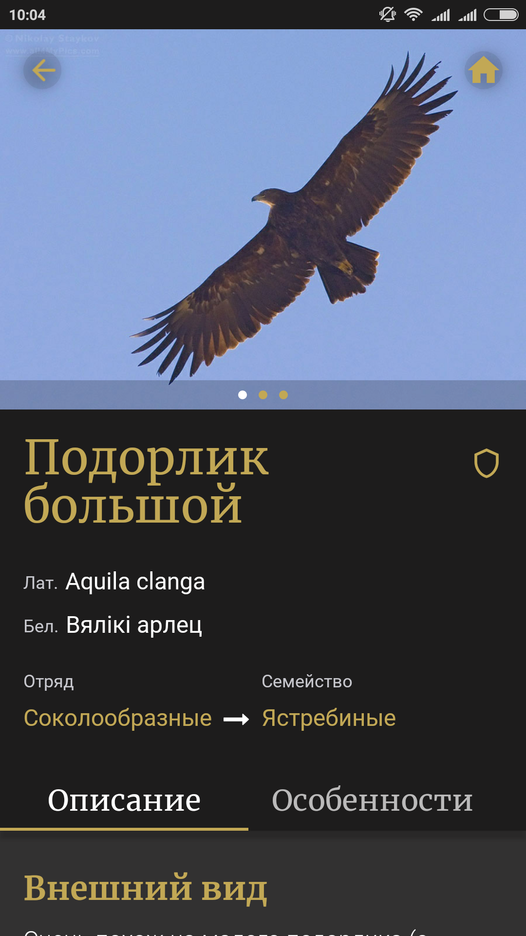 Screenshot_2018-11-23-10-04-14-422_com.apbbirdsguide.app